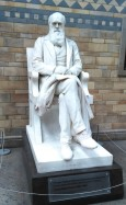 Darwin statue in the Natural History Museum in London. (Photo by David W. Bulla)